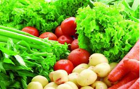 蔬菜行情各不同 针对市场选择品种